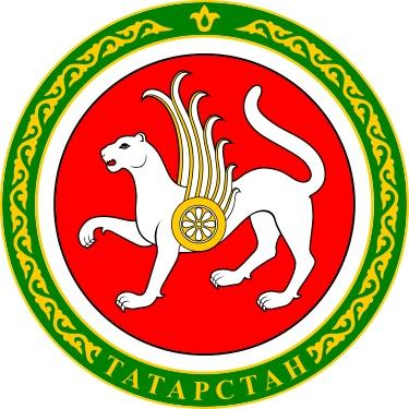 Премия Президента Республики Татарстан за вклад в развитие институтов гражданского общества, изображение №1