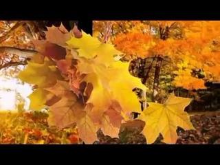 Бутырка (Какая осень в лагерях!) - Осенний вариант (Беспредел - 1989)