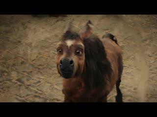 Сказочное приключение «Конёк-Горбунок» — скоро в кино!