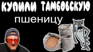 #shorts Пшеница из Тамбова на витграсс.