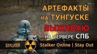39. Артефакты на ТУНГУСКЕ. Сервер СПБ. Сталкер Онлайн | Stalker Online | Stay Out