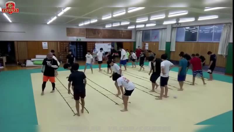 ОФП в японском дзюдо LUDUS RU