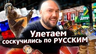 УЛЕТАЕМ соскучились по РУССКИМ! ВЛОГИ Amega family