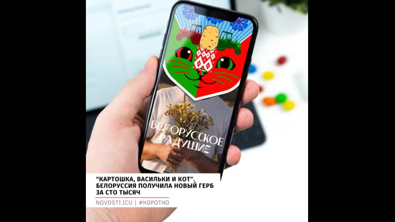 Картошка васильки и кот Белоруссия получила новый герб за сто тысяч