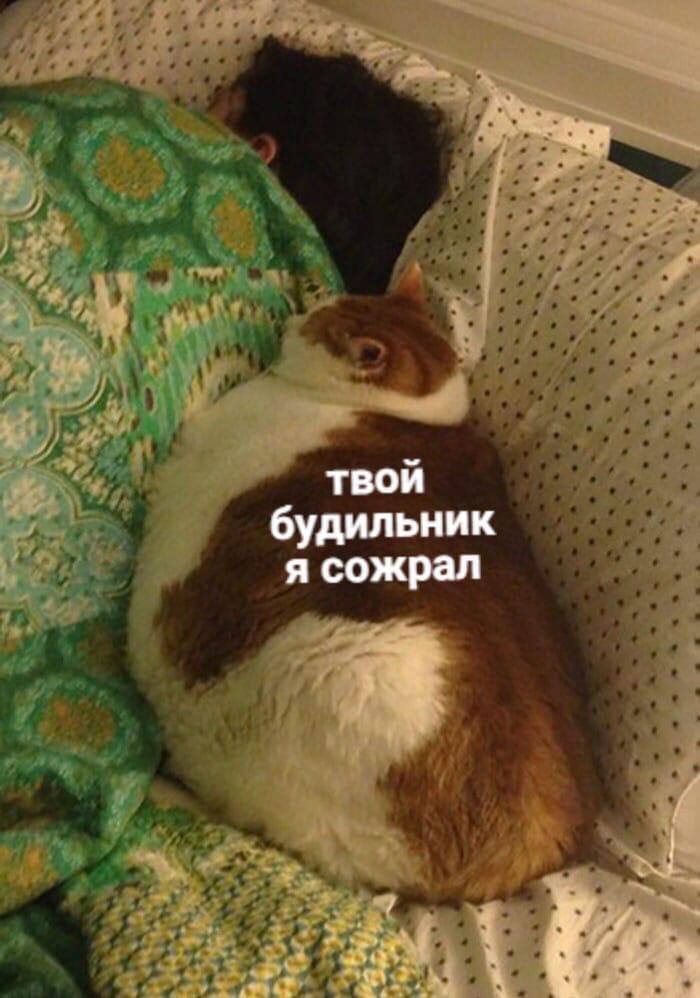 5xkdGG8NWKY - Boт онa зaбoтa