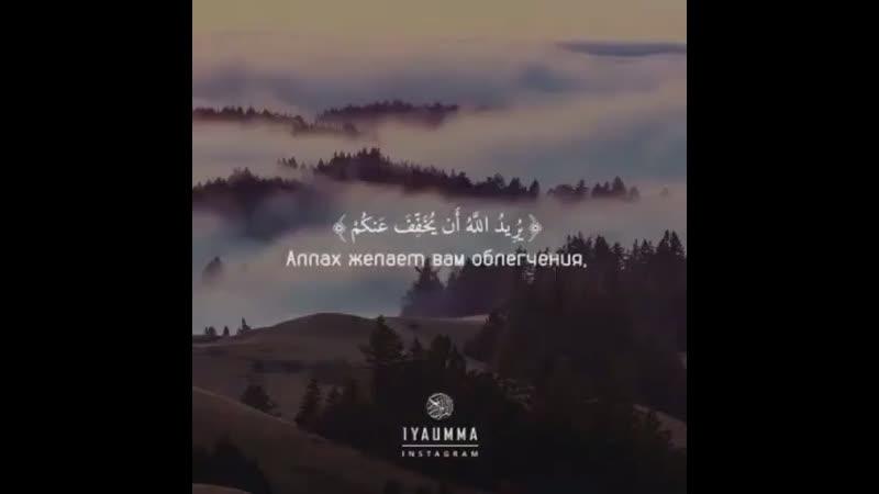 Аллаh милосердный 🖤