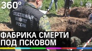 Фабрика смерти в Моглино: в Псковской области расследуют дело о массовом геноциде мирных жителей