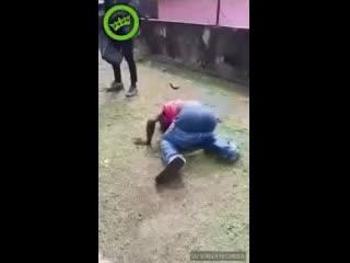 Эпичная битва