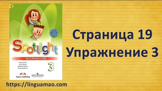 Spotlight 3 класс Workbook страница 19 номер 3 ГДЗ решебник