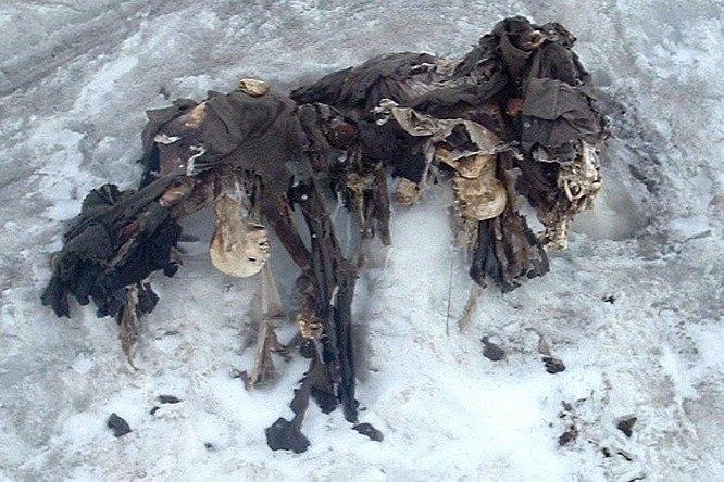Что скрывают льды: 12 страшных находок, обнаруженных в ледниках, изображение №14
