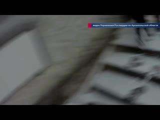 Полицейскими Архангельской области задержаны подозреваемые в совершении разбойного нападения