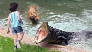 Крокодил схватил девочку и потащил в воду, никто и представить не мог, что произойдет дальше...