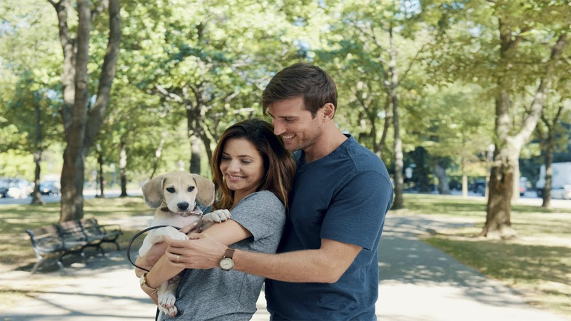 Hallmark Movies 2020 How to Train Your Husband or How to Pick Your Second Husband First