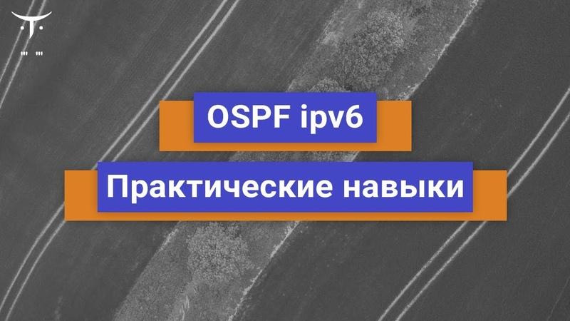 OSPF ipv6 Практические навыки Бесплатный урок OTUS
