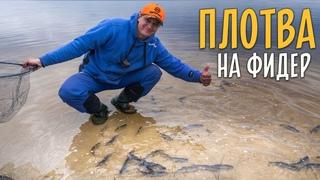 ВЕСЕННЯЯ ПЛОТВА на фидер. Рыбалка на Днепре.