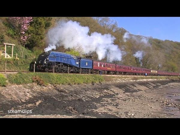 60007 Sir Nigel Gresley at Speed in South Devon 19th April 2014