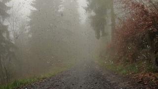 ВЕСЬ МИР ПРОТИВ ПУТИНА! Дождь.Шум дождя и грозы.Мелодия дождя.Для сна ,медитации или учёбы.