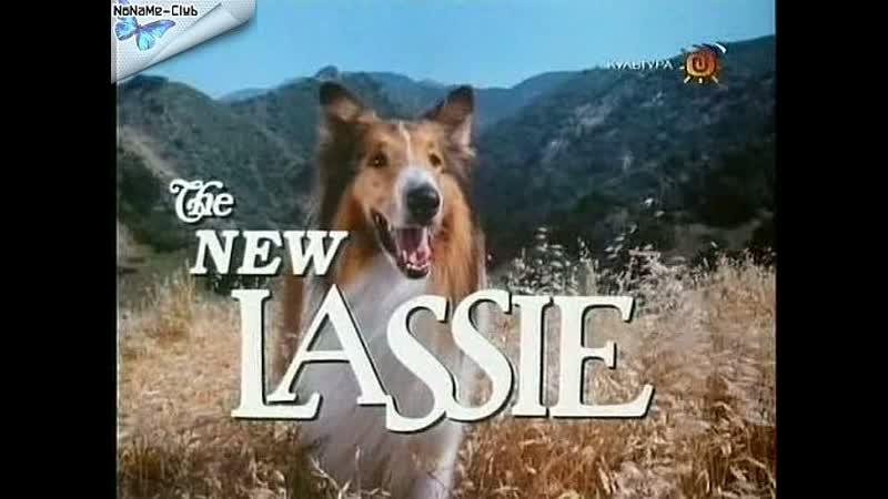 Новые приключения Лесси(1989–1991) серии 7-12