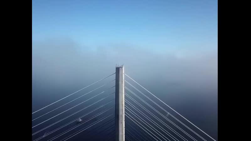 Экстремалы залезли на Русский мост но это неточно