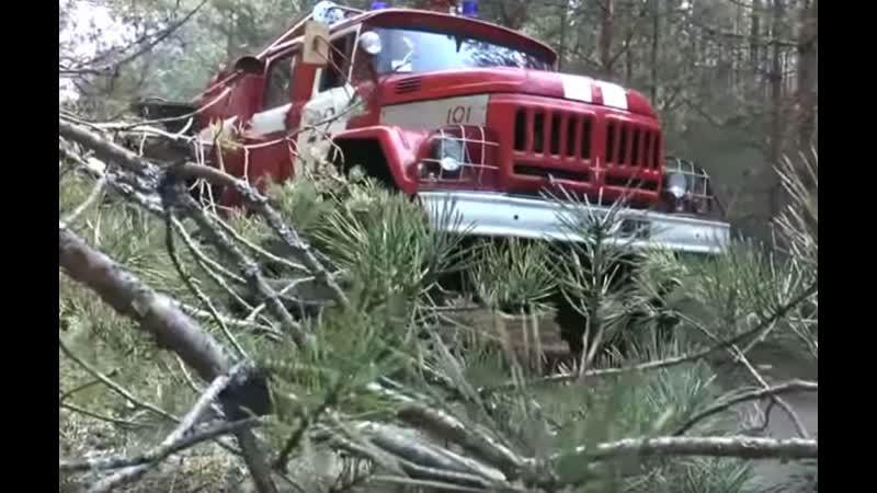 Триває ліквідація лісової пожежі у Зоні відчуження безумовного обов'язкового відселення