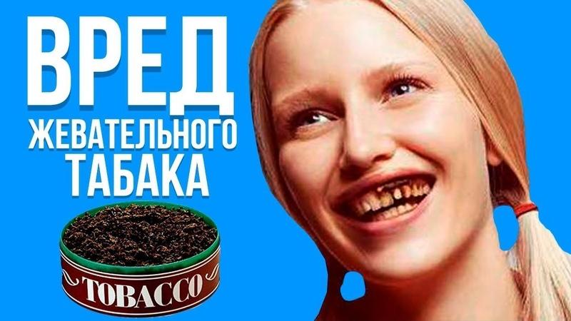 СНЮС Вред Жевательного Табака Школьники не оценят