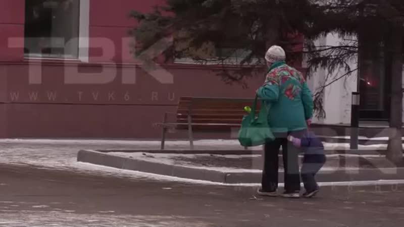 В Красноярске очевидцы сняли как бабушка выгуливала внука на поводке вожжах