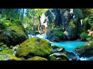 Meditation Music, Relaxation Music, Белый шум водопада для глубокого сна, приятная музыка 8 часов