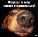 Личный фотоальбом Темки Бочарова