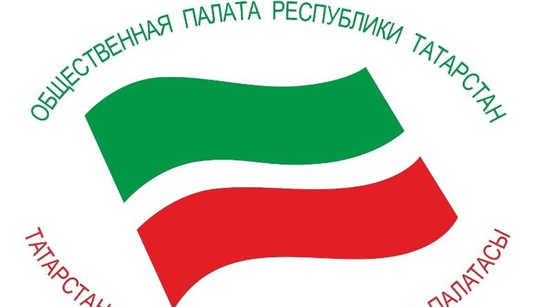 Онлайн встреча НКО и Общественной палаты Республики Татарстан, изображение №1