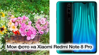 Мои примеры фотографий на Xiaomi Redmi Note 8 Pro, основная камера 64 МП