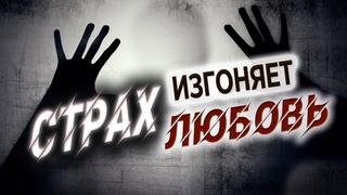 #139 Страх изгоняет любовь - Алексей Осокин - Библия 365 (2 сезон)