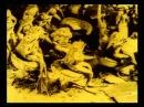 Владислав Старевич Сборник N1 мультфильмы cartoon мультики советские мультфильмы русские мульты