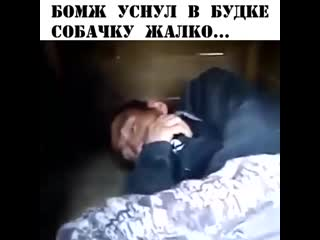 Уснул в собачьей бутке!