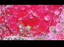 ДОРОГОЙ ПОДРУГЕ! Красивые розы, музыка и стихи 1080 X 1920 .mp4