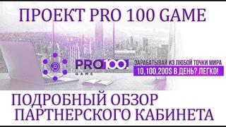 Подробный обзор кабинета Pro100 Game