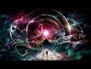 КАК НАМ ВЫЖИТЬ частота вибрации Земли повышается