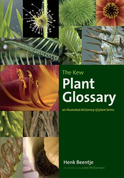 The Kew Plant Glossary  An Illustrated Dictionary of Plant Terms by Henk Beentje