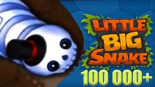 Little Big Snake io. Большая Маленькая Змея. Скелет Пижон продолжает РЕЙД на больших КОРОН. #9