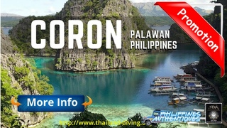 ⛵Scuba Diving Cruise in Coron Philippines Palawan, #Busuanga, 100% nature diving, the most beautiful