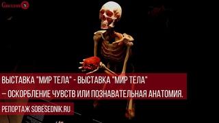 """Выставка """"Мир тела"""" – оскорбление чувств или познавательная анатомия. Репортаж"""