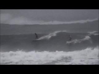 Chris parker - typhoon.