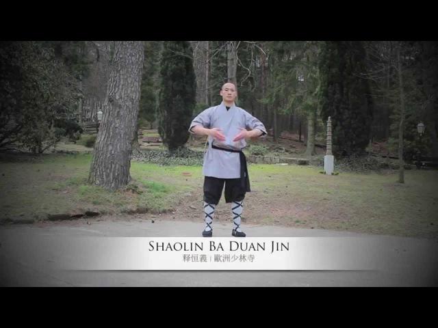 Shaolin Ba Duan Jin 少林八段锦 performed by Master Shi Heng Yi 释恒義 Qi Gong Excercises