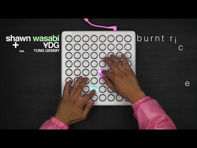 Shawn Wasabi BURNT RICE Original Song
