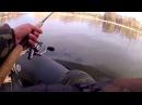 Щука Отчет о рыбалке 05 03 2015
