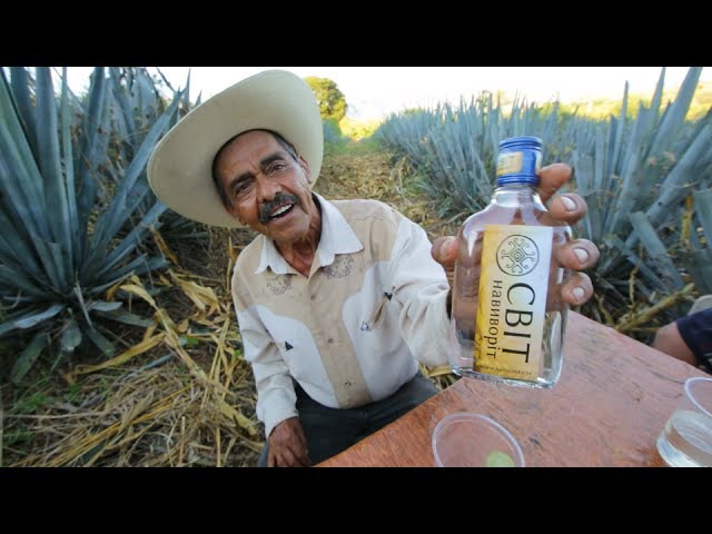Латинская Америка Цоциль Город Текила Мир Наизнанку 3 серия 6 сезон