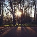 Александра Соколова фотография #25