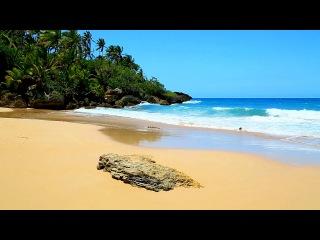 Ocean Sounds for Sleeping, Meditation, Yoga on a Tropical Beach