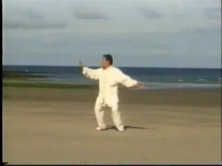 Чэнь Сяован - Чэнь тайцзи-цюань (Chen Xiaowang - Tai Chi Chuan. Chen Style Taijiquan Laojia)