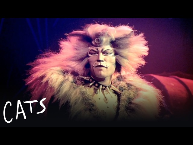 The Rum Tum Tugger   Cats the Musical
