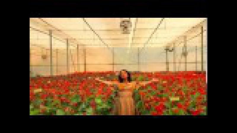 Gabriela Fernandez canta Regalito del Cielo